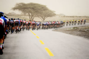 Stage 6 – Photo Gallery
